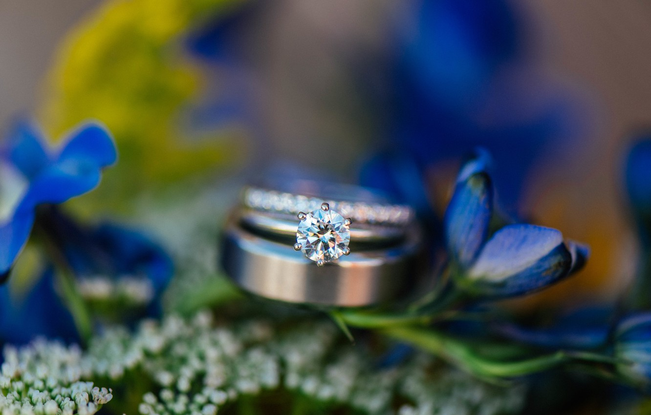 Photo wallpaper flowers, stone, ring, wedding, blue petals