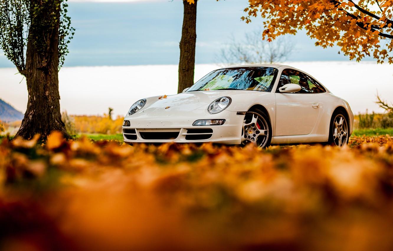 Photo wallpaper autumn, white, the sky, leaves, 911, Porsche, white, Porsche, sky, autumn, tree, foliage