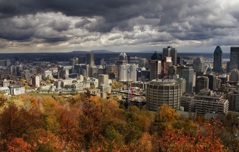 Photo wallpaper autumn, trees, The city