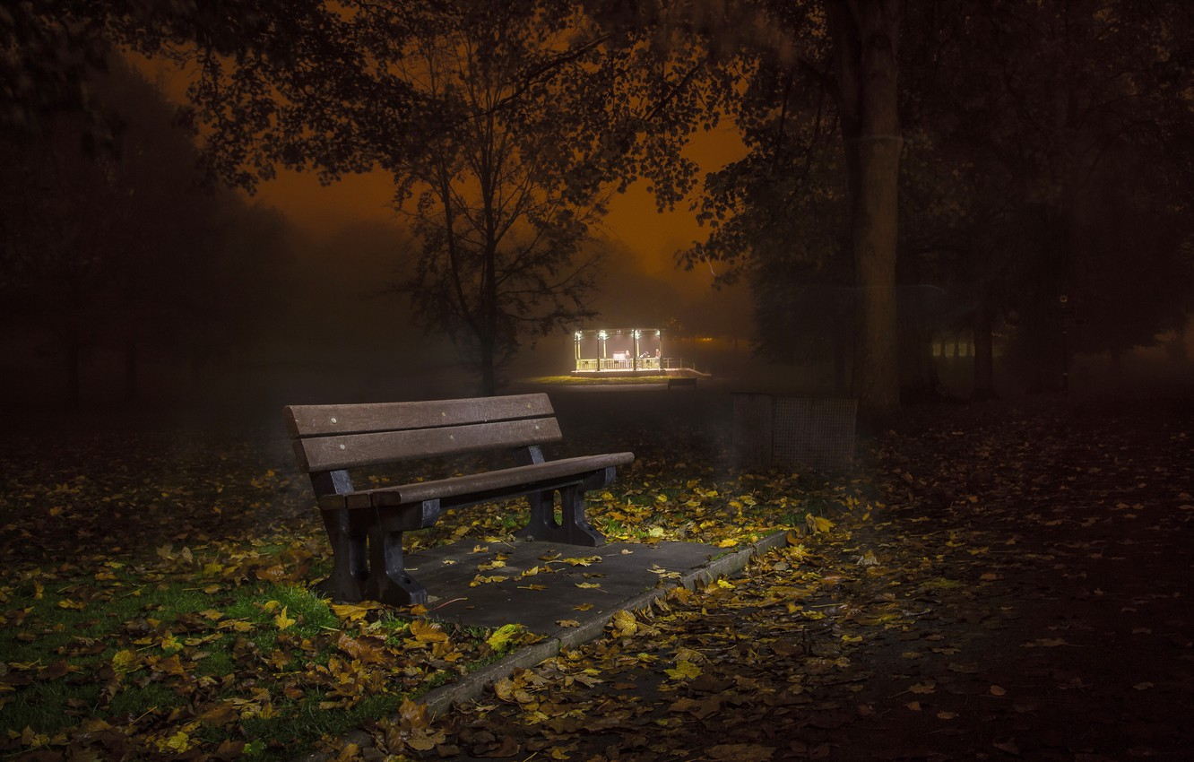 Photo wallpaper autumn, night, the city, street, bench
