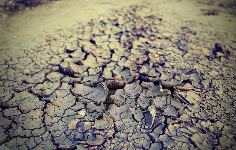Photo wallpaper summer, earth, heat, drought, 2016