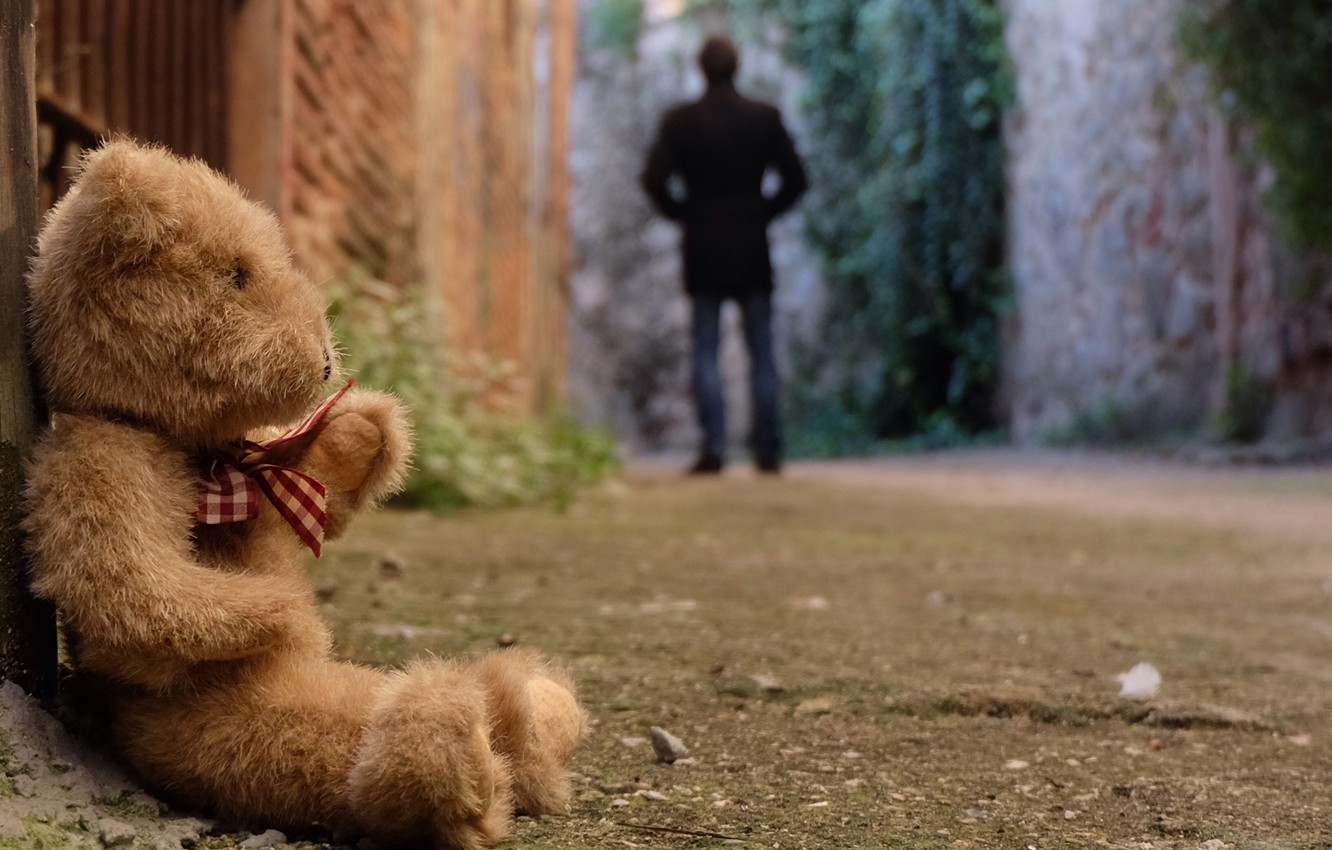 Photo wallpaper sadness, loneliness, toy, bear, bear, toy, bear, cute, lonely, Teddy