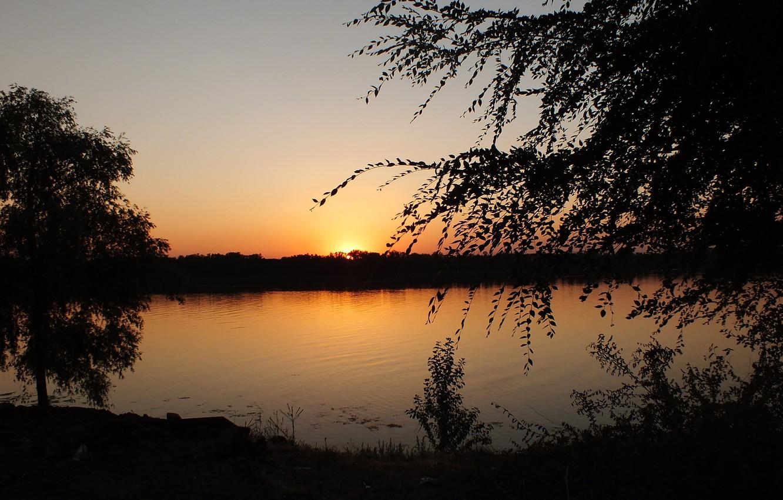 Photo wallpaper water, the sun, sunset, Volga