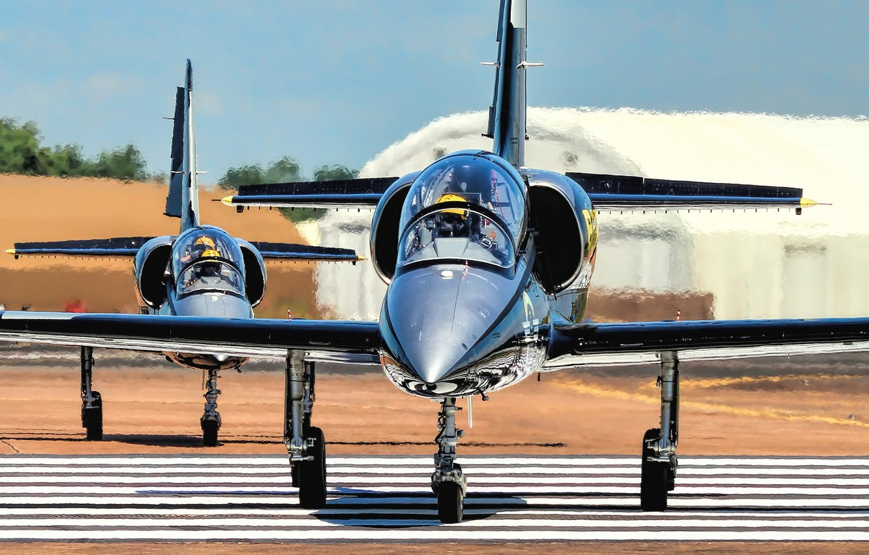 "Photo wallpaper the plane, ""Albatross"", Albatros, combat training, Aero L-39S"