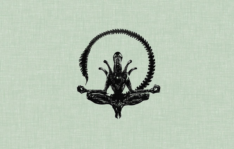 Photo wallpaper minimalism, stranger, the Lotus position