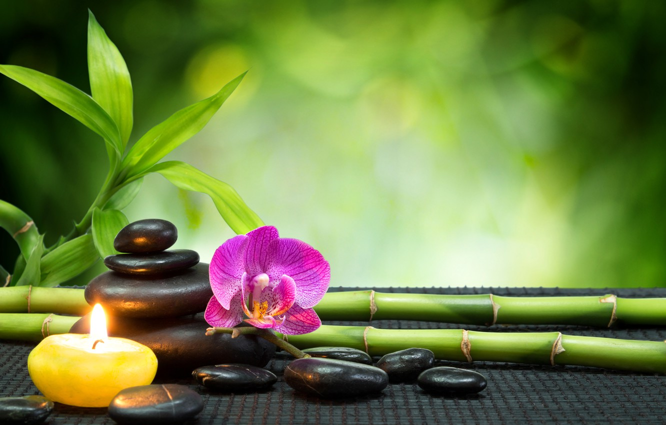 Photo wallpaper stones, candle, bamboo, Orchid, stones, Spa