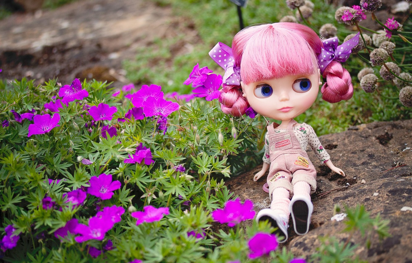 Photo wallpaper look, flowers, stone, toy, doll, sitting, pink hair