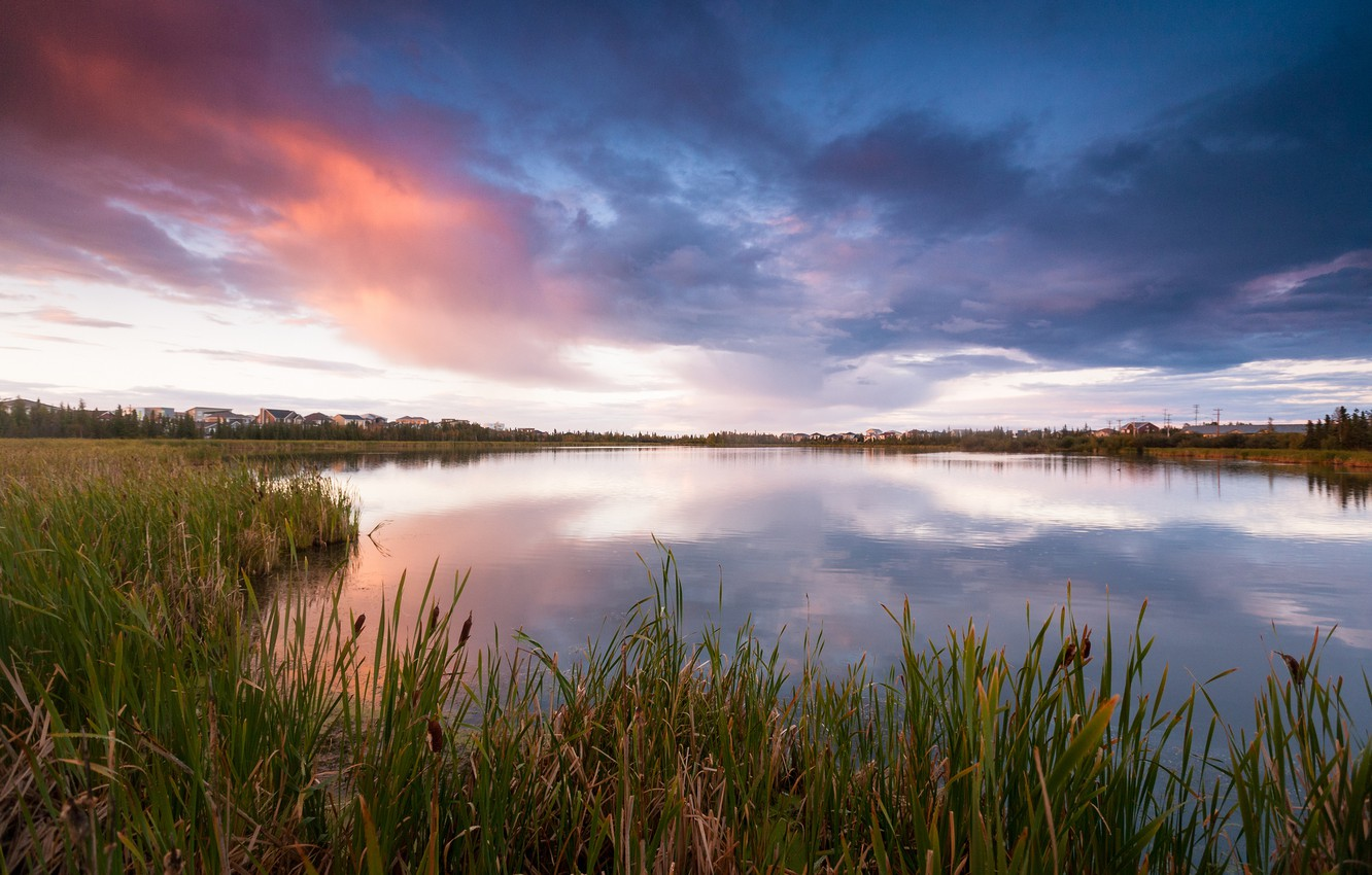 Photo wallpaper the sky, grass, clouds, lake, the evening, Canada, reed, houses, the village