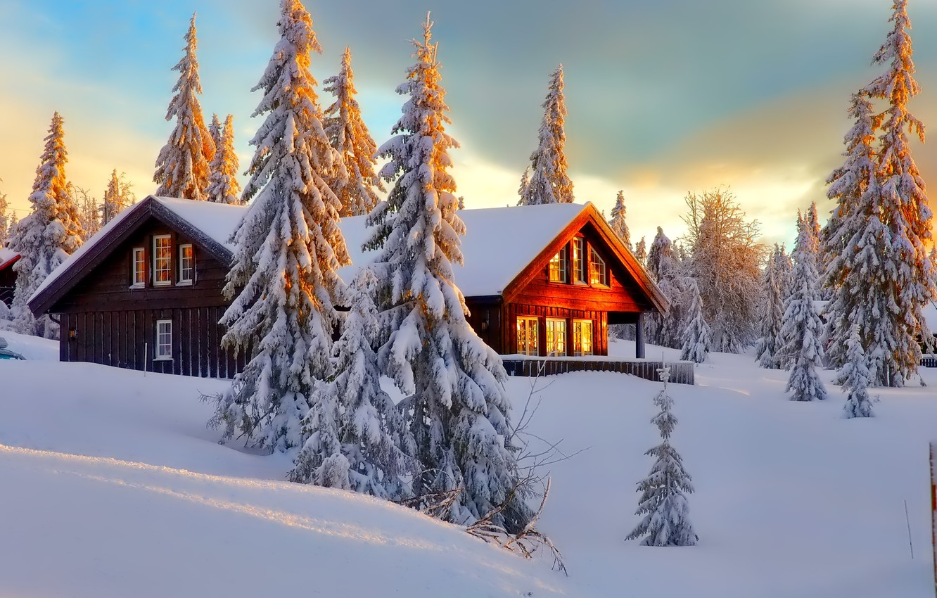 Photo wallpaper winter, forest, the sky, snow, trees, landscape, nature, house