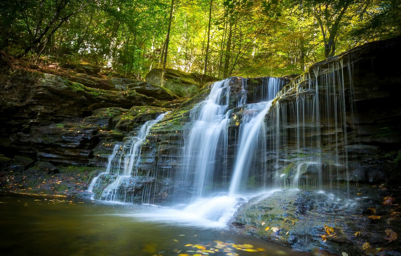 Photo wallpaper autumn, forest, waterfall, PA, cascade, Pennsylvania, Ricketts Glen State Park