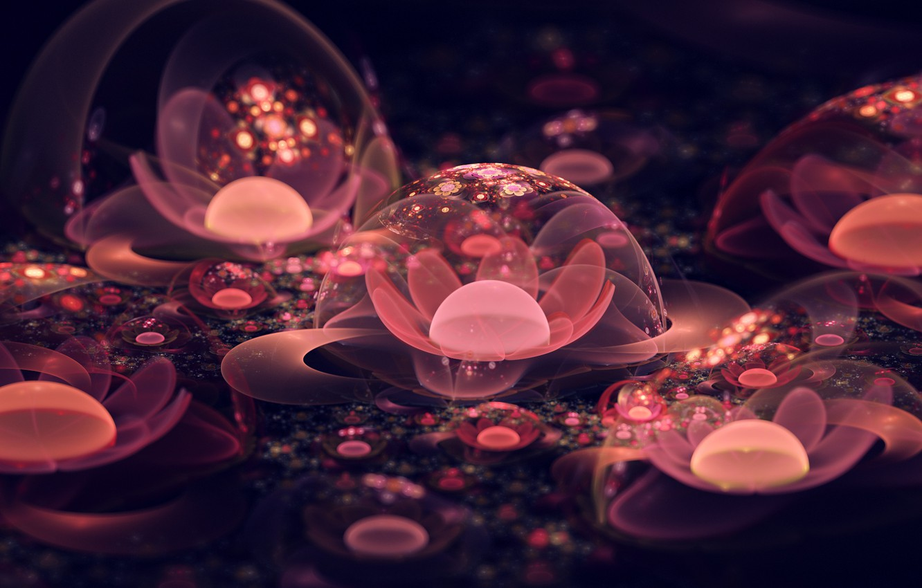 Photo wallpaper flower, macro, abstraction, bubbles, flowers