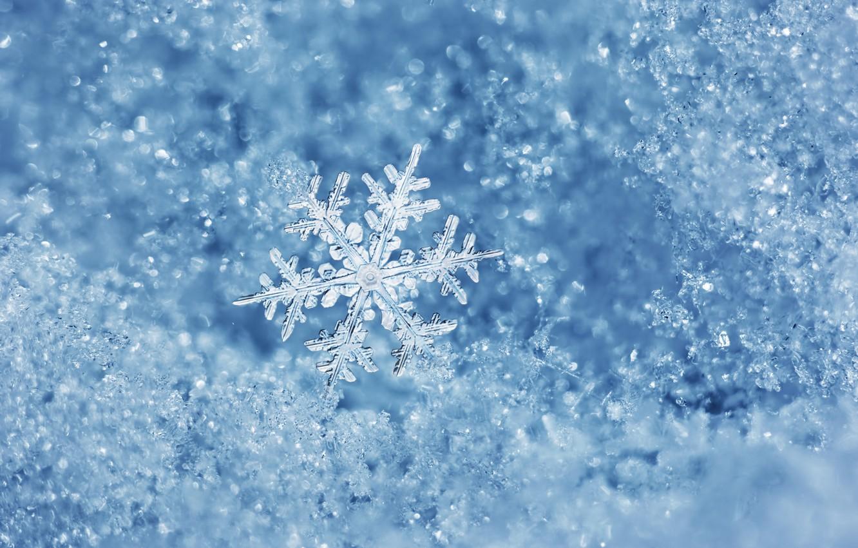 Photo wallpaper ice, winter, water, macro, ice, snowflake