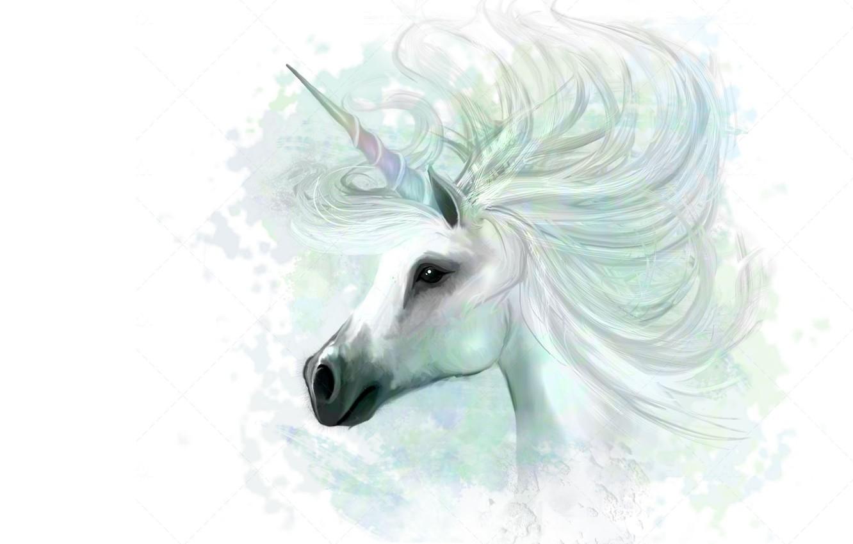Wallpaper Fantasy Horse Art Mane Unicorn Images For Desktop Section Fantastika Download