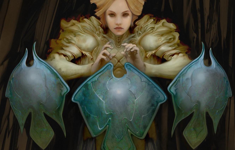 Photo wallpaper girl, fantasy, art, shield, Allen Williams