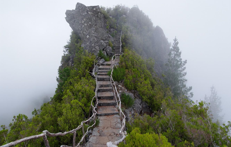 Photo wallpaper fog, mountain, ladder, stage
