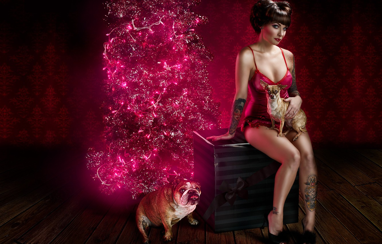 Photo wallpaper dogs, girl, holiday, box, gift, linen, new year, Christmas, spruce, tattoo, bulldog, garland