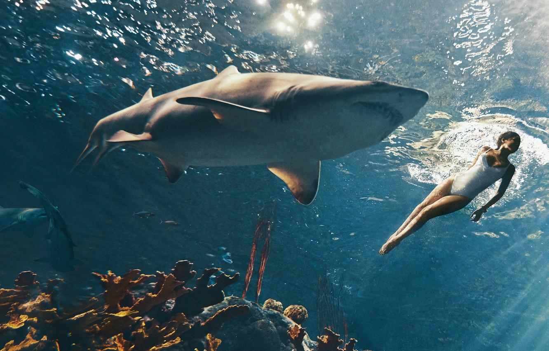 Photo wallpaper sea, swimsuit, model, actress, corals, photographer, singer, Rihanna, sharks, journal, under water, rays of light, …