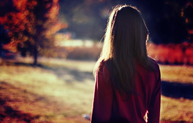 Photo wallpaper girl, the sun, back, brunette