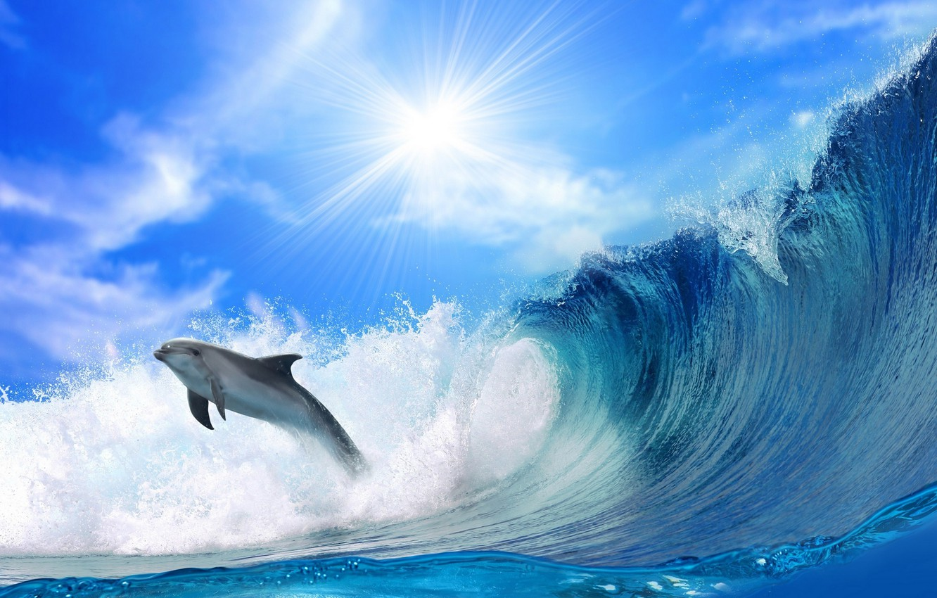Photo wallpaper The OCEAN, The SKY, The SUN, WAVE, RAYS, FOAM, FISHING, DOLPHIN