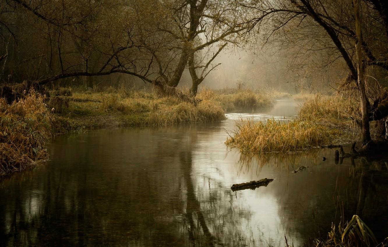 Photo wallpaper autumn, river, November