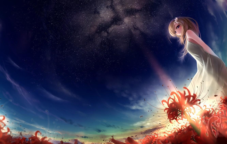 Photo wallpaper field, girl, stars, sunset, flowers, art, red, munashichi, radiata, Lycoris