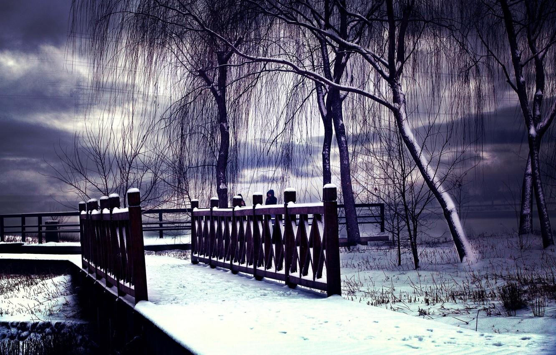 Photo wallpaper winter, snow, landscape, winter, snow, scenery