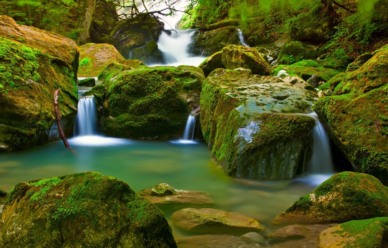 Photo wallpaper forest, waterfall, moss
