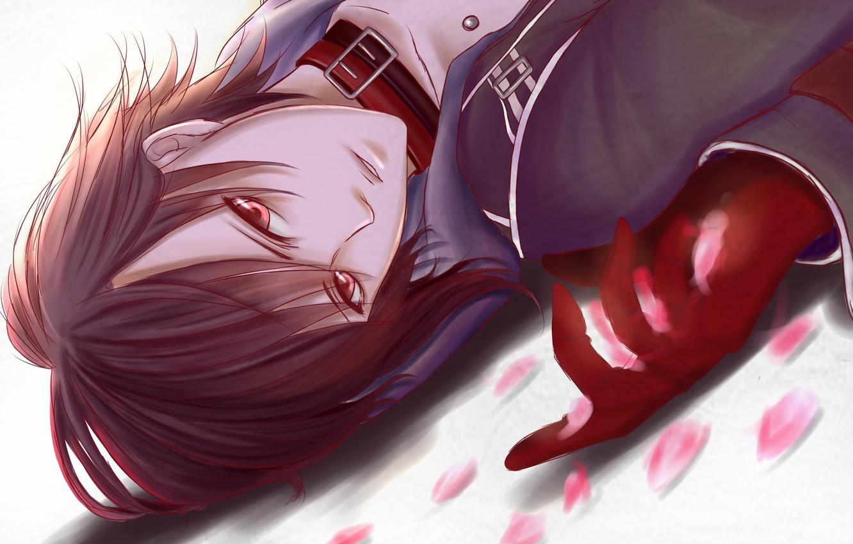 Photo wallpaper petals, guy, lying, amnesia, shin