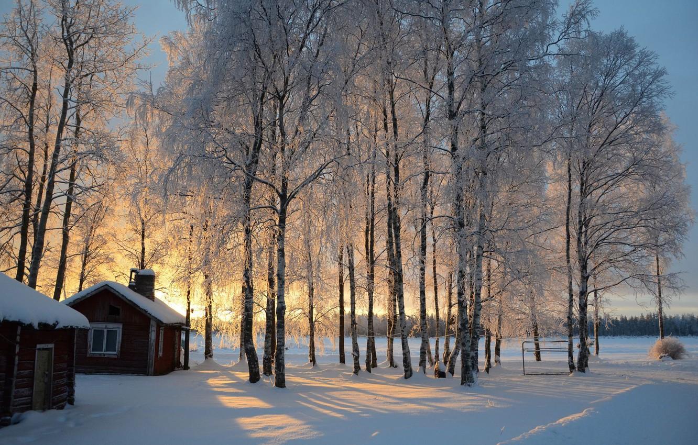 Photo wallpaper winter, snow, trees, sunrise, hut, birch, Finland, Finland
