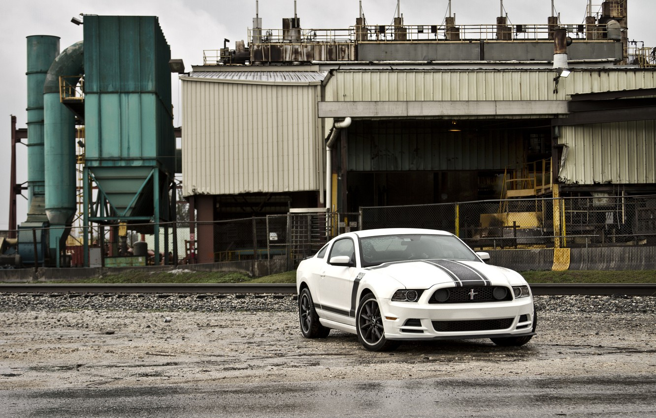 Photo wallpaper white, plant, mustang, the fence, white, ford, Ford Mustang, boss 302, boss 302