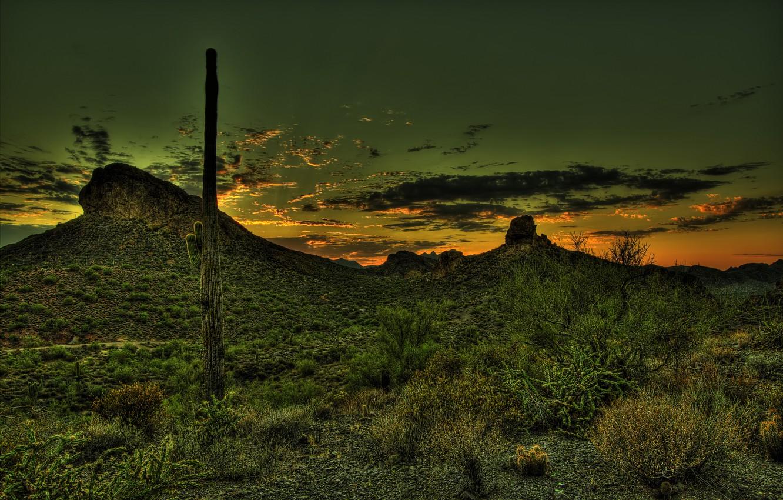 Photo wallpaper sunset, mountains, desert, HDR, cactus, Mexico