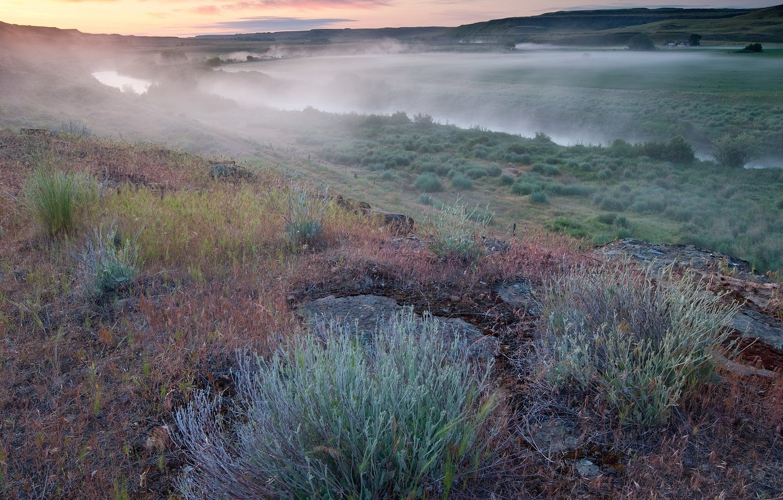 Photo wallpaper field, grass, fog, river, Morning