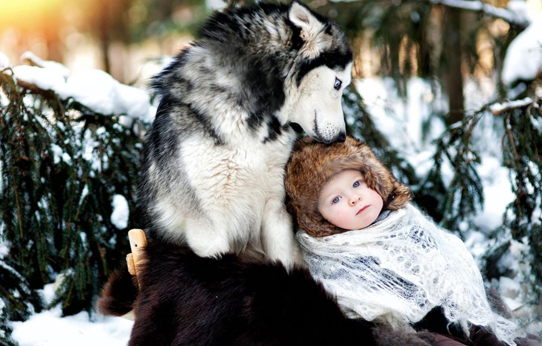 Photo wallpaper winter, snow, child, dog, friendship, husky