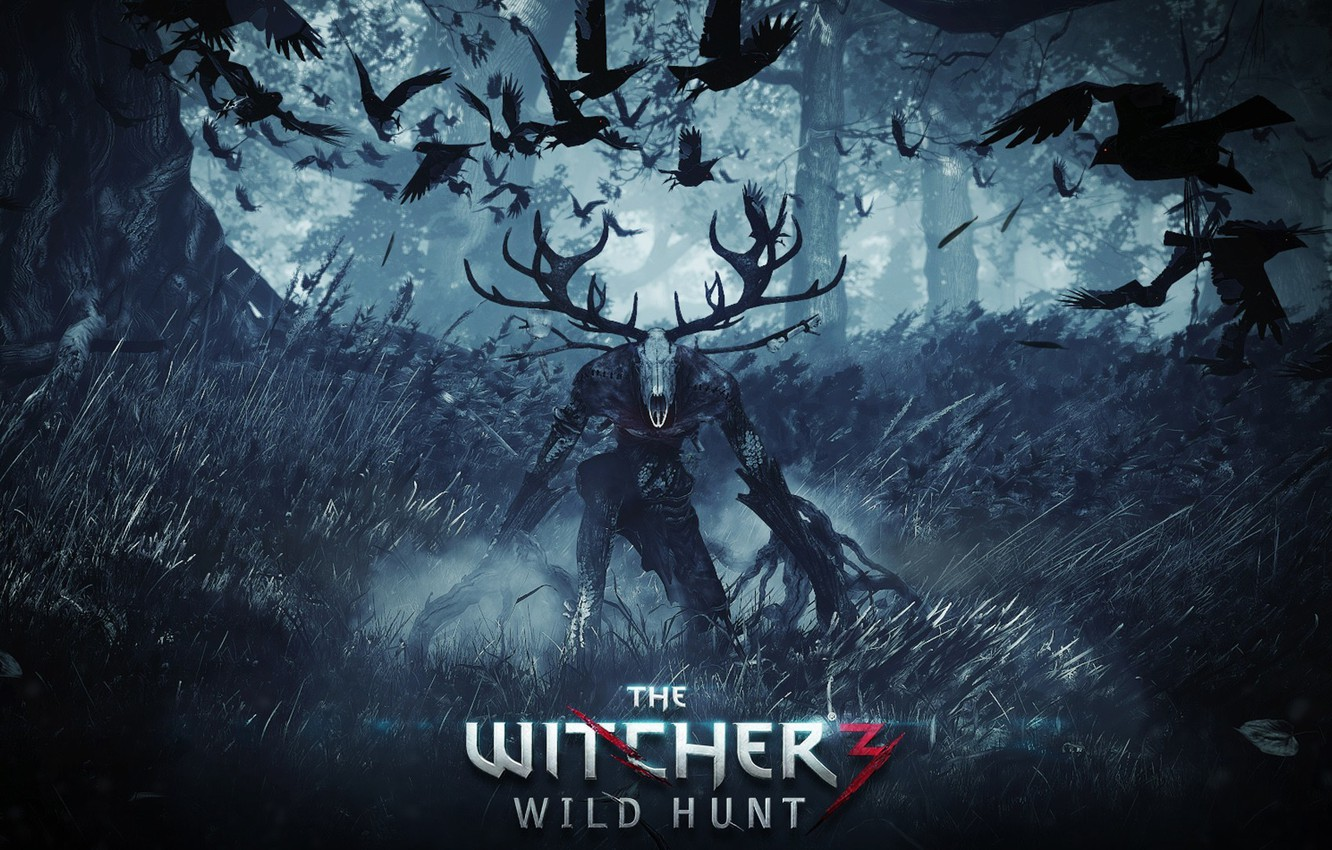 Wallpaper The Witcher Witcher The Witcher 3 Wild Hunt The