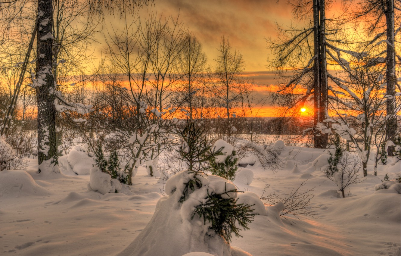 Photo wallpaper winter, the sky, the sun, clouds, landscape, sunset, nature, white, white, sky, landscape, nature, beautiful, …