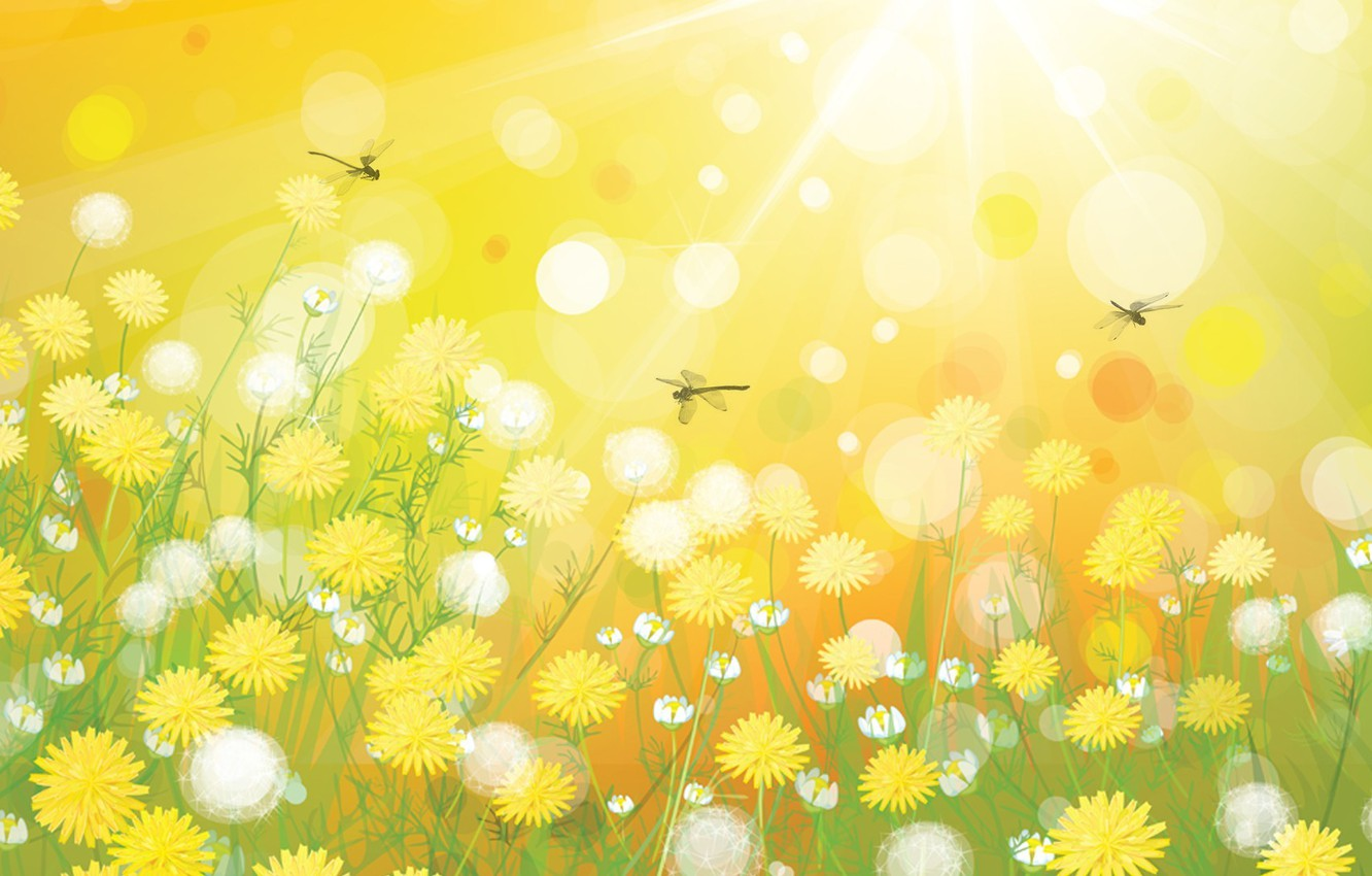 Photo wallpaper grass, rays, light, flowers, collage, dragonfly, meadow