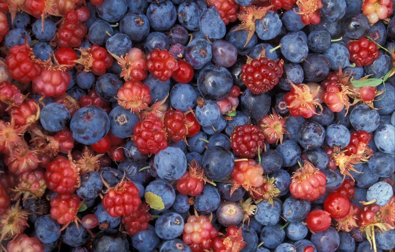 Photo wallpaper berries, food, berries