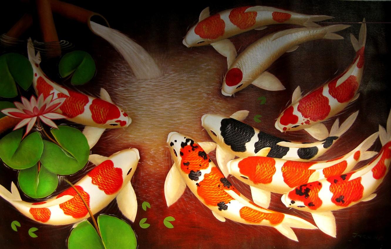 Wallpaper Water Fish Art Lotus Goldfish Spring Koi
