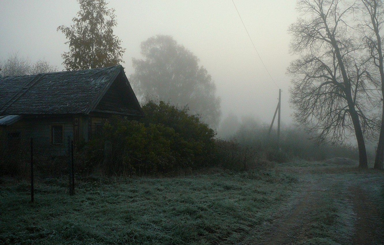 Photo wallpaper fog, house, village