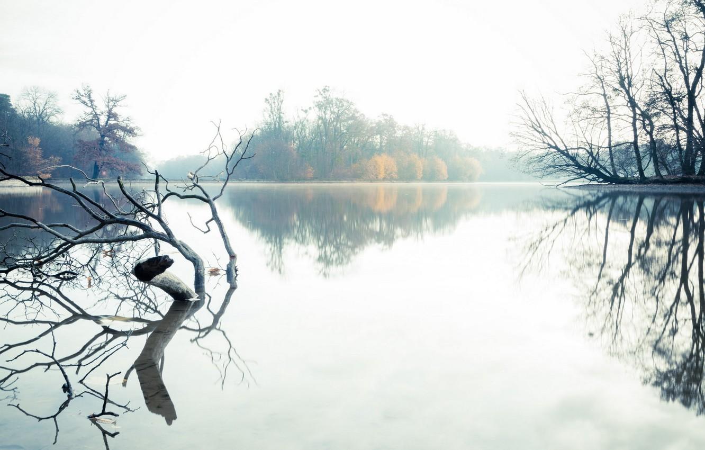 Photo wallpaper landscape, fog, lake, morning