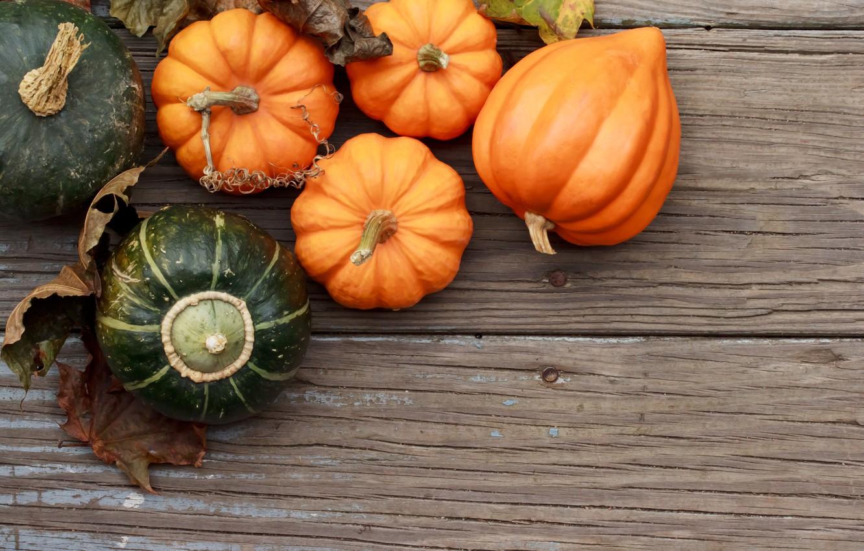 Photo wallpaper autumn, leaves, tree, harvest, pumpkin