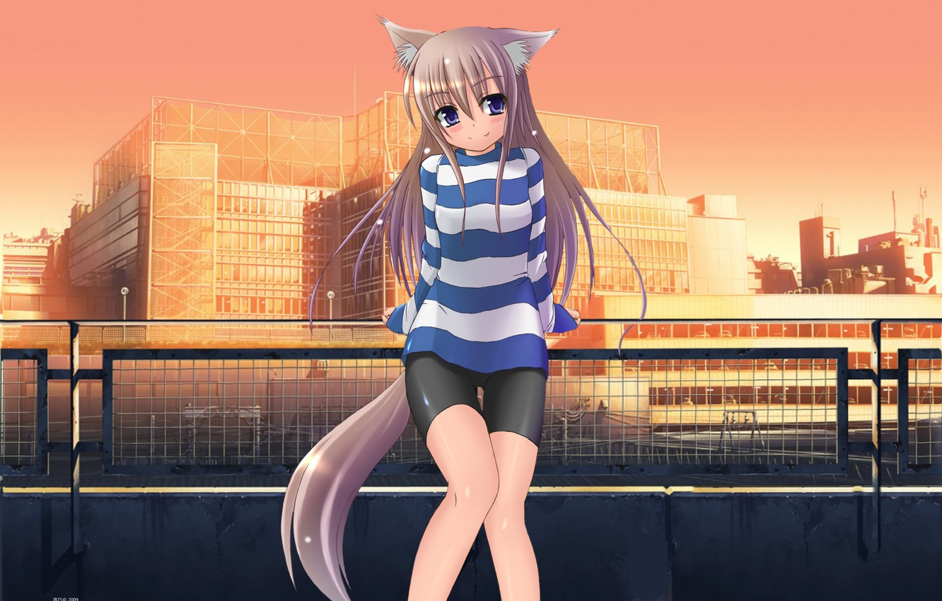 Photo wallpaper The city, Legs, Ears, Ponytail, Fox