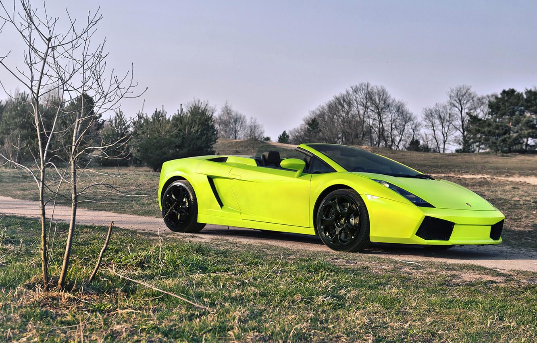 Photo wallpaper nature, green, Lamborghini, lamborghini gallado spyder