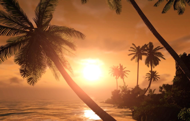 Photo wallpaper sunset, tropics, palm trees, silhouettes