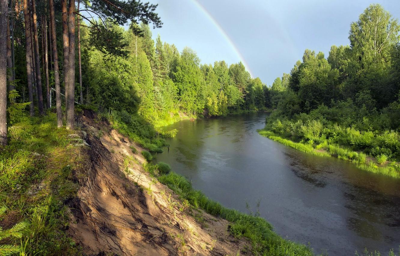 Photo wallpaper forest, landscape, nature, river, rainbow