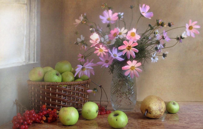 Photo wallpaper flowers, Kalina, bouquet, kosmeya, composition, berries, still life, fruit, November, apples, autumn