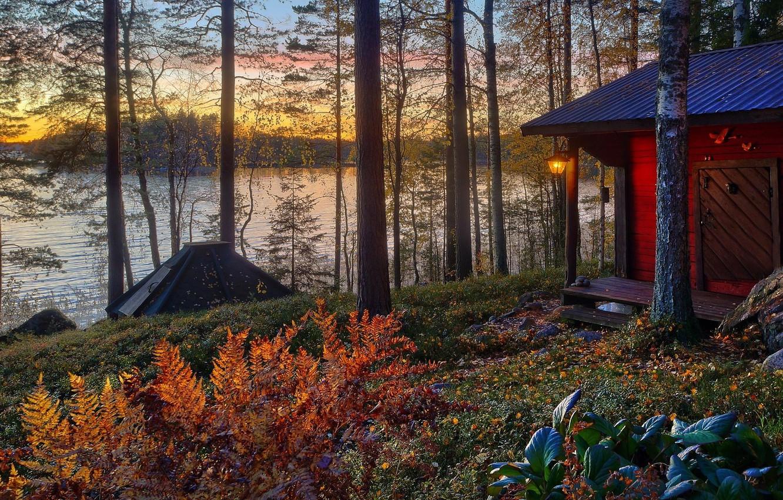 Photo wallpaper autumn, forest, the sun, trees, landscape, sunset, Villa, home, Nature, house, forest, architecture, trees, landscape, …