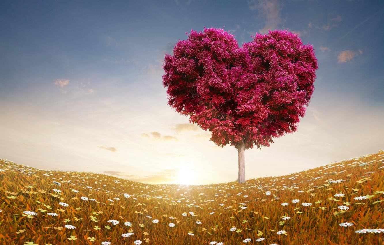 valentine s day love romance 6077