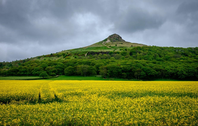 Photo wallpaper field, the sky, trees, clouds, rock, England, mountain, rape, Newton under Roseberry
