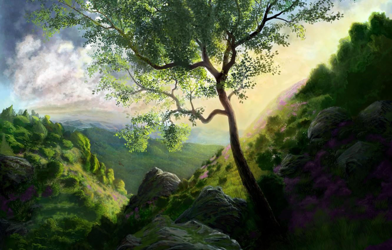 Photo wallpaper greens, grass, flowers, nature, stones, tree, rocks, hills, art, gorge